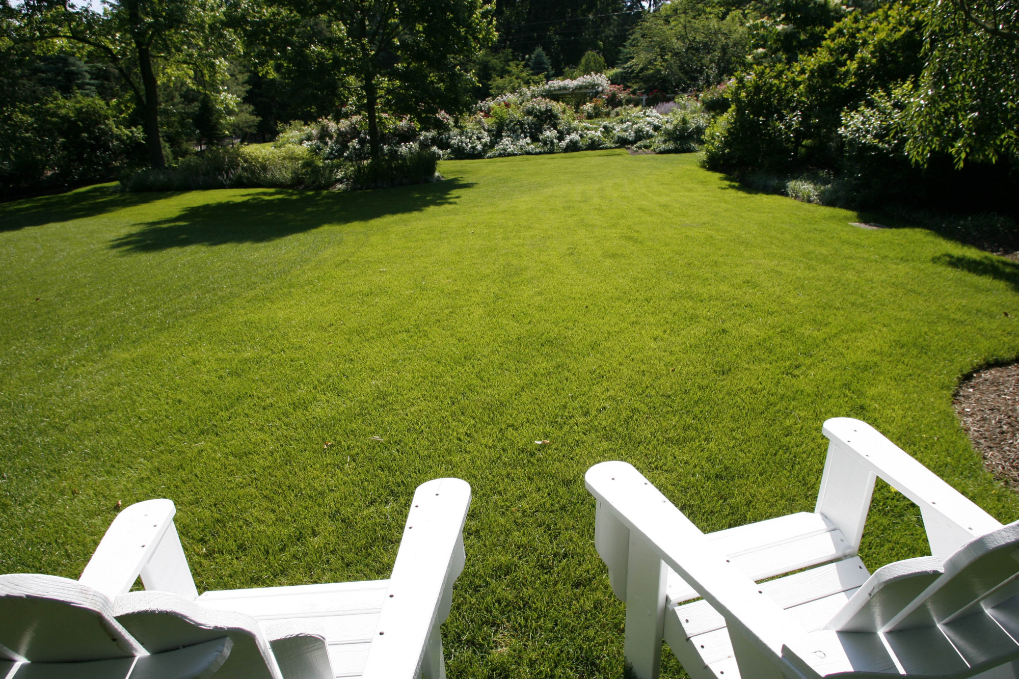 A view of the manicured lawn